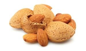 Almond-Iran (3)